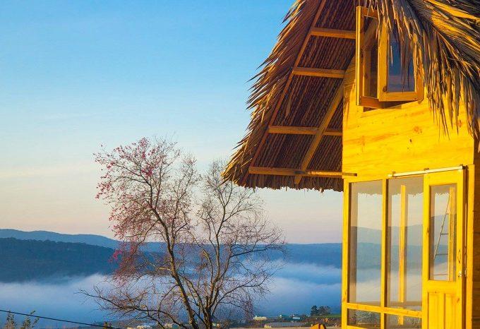 Đi tìm những homestay Đà Lạt săn mây có view cực đẹp